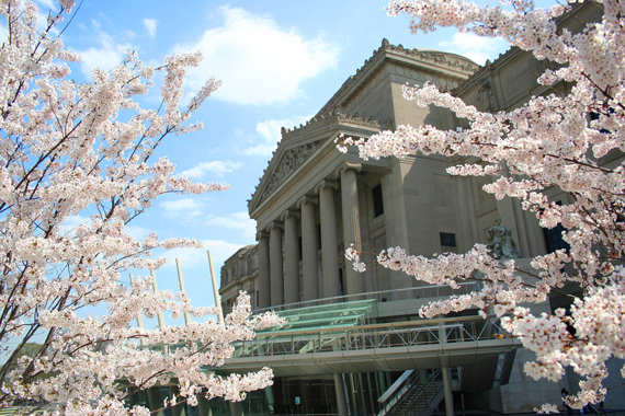 "Brooklyn Museum, Brooklyn, New York. Part of ""Equality-Diversity Agreement #3"", 2010"